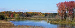 Brenna Ness (Delaware Wild Lands' Betts Farm on Augustine Creek)
