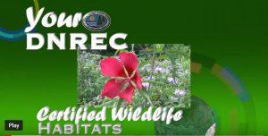 Certified Wildlife Habitats